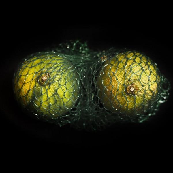 lemon_k_web