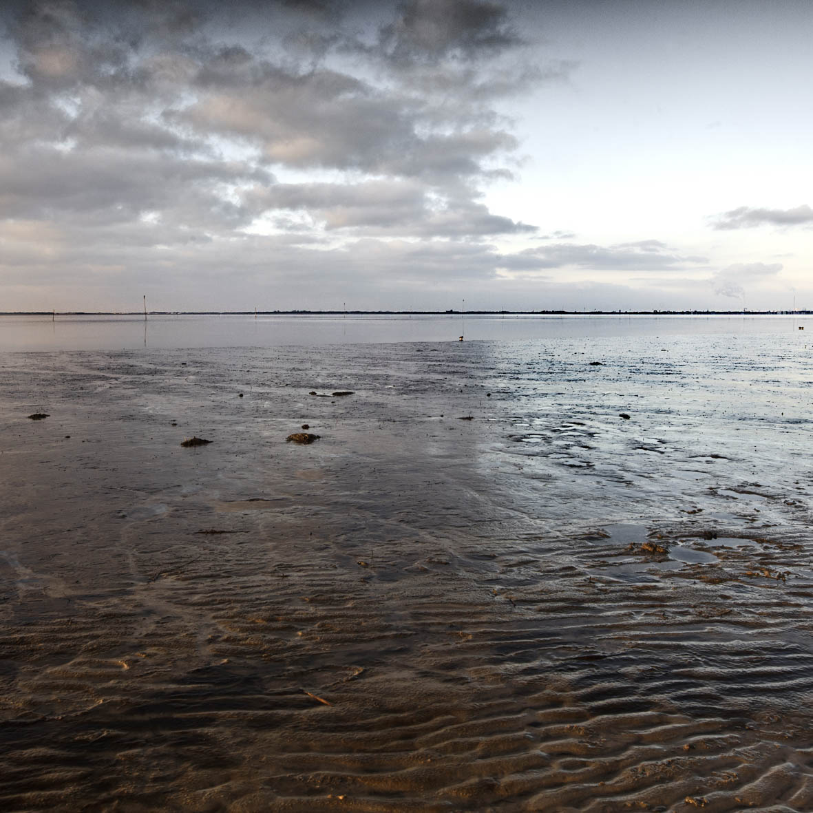_MG_1992_quadrat_beach1